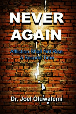 Never Again Book Cover